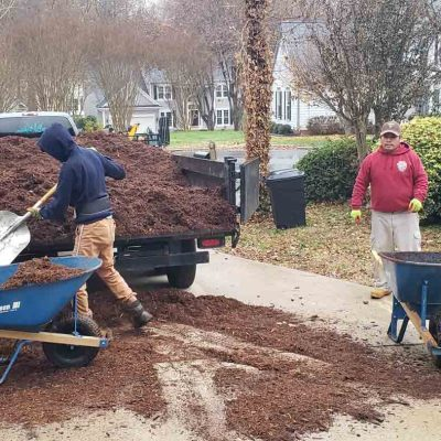 affordable lawn care cary nc